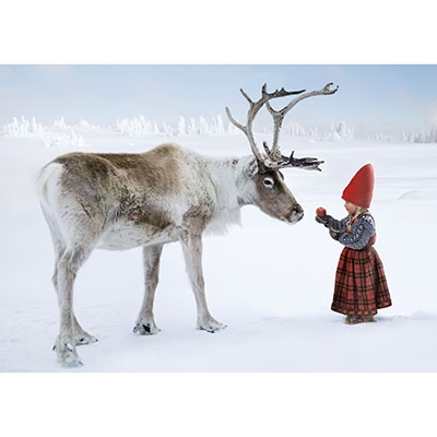 Anja and the Reindeer (NO001)